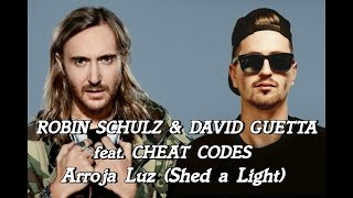 ROBIN SCHULZ & DAVID GUETTA  - Shed a Light(Letra espanol)