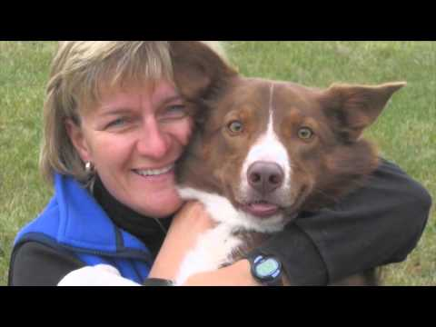 Defining Moments...In The Life Of A Dog Trainer
