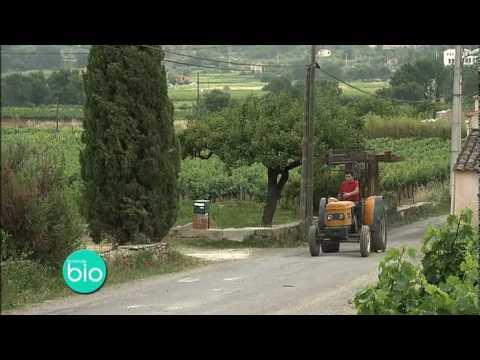 L'agriculture biologique : source de vitalité en milieu rural (Minute Bio)