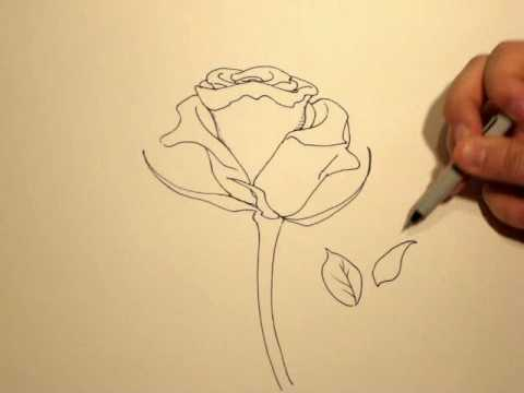 How to draw a rose with a sharpie 1 youtube