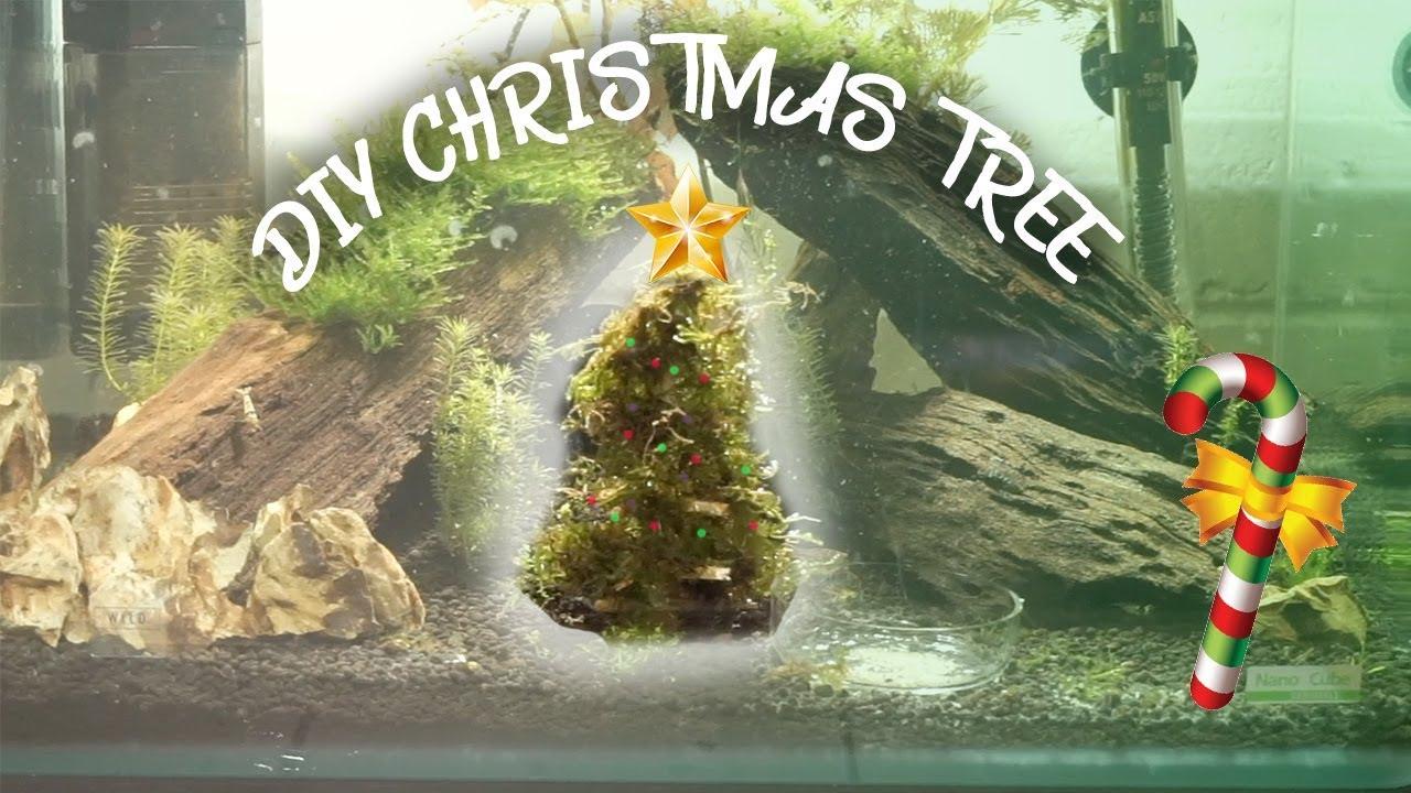 HOW TO: MOSS CHRISTMAS TREE FOR AQUARIUM!