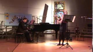 Antonio Vivaldi Flute Concerto in D minor - Allegro non molto and Larghetto