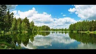 Наша рыбалка в Подмосковье(, 2016-07-19T18:32:18.000Z)