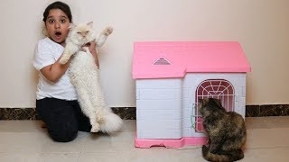 شرينا قط جديد شوفواردة فعل قطتنا!! عصبت !! Our cat Meet Our New cat angry cat