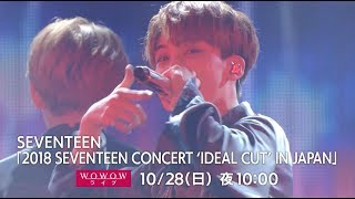 [DIGEST] WOWOW / 「2018 SEVENTEEN CONCERT 'IDEAL CUT' IN JAPAN」