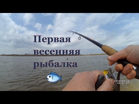 Весенняя рыбалка 2016 / Удочка, фидер / Fishing spring 2016 (Рыболовный дневник®Fishing diary)