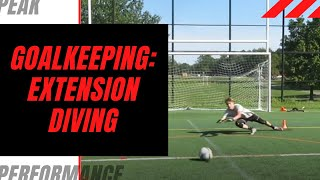 Goalkeeper Training: Extension Diving