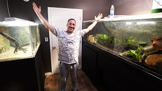 fish-room-reveal-the-king-of-diy-aquarium-gallery