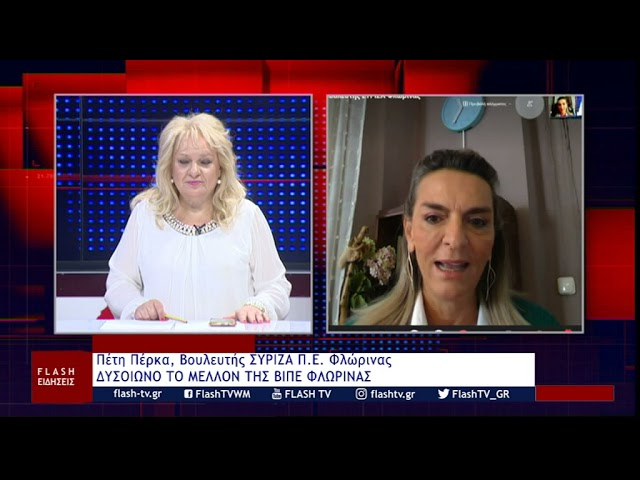 Πέτη Πέρκα, Βουλευτής ΣΥΡΙΖΑ Π.Ε. Φλώρινας