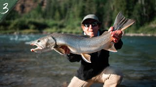 NORTHERN NATIVES   Catching Monster Bull Trout on the fly
