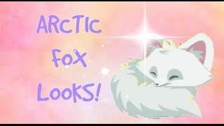 ARCTIC FOXES! ~Animal Jam look book~