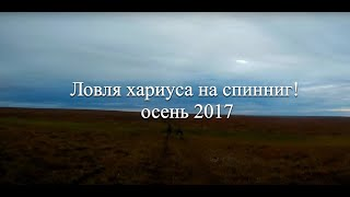Ловля хариуса на спиннинг осень 2017. Fishing for grayling on spinning