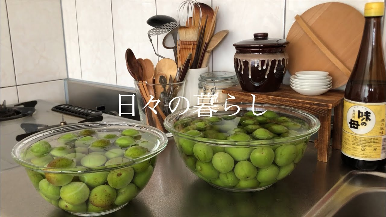 【暮らしのvlog】漢方/手作り布ぞうり/梅シロップ作り