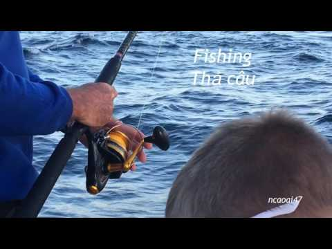 Fishing Trip On Tasman Sea - Australia - DIY - Fishing Tips - Câu Cá Trên Biển Tasman