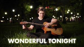 Eric Clapton - Wonderful Tonight (Alexandr Misko)