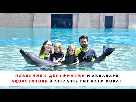 Плавание с ДЕЛЬФИНАМИ в Dolphin Bay и Аквапарк Aquaventure в отеле Atlantis The Palm Dubai