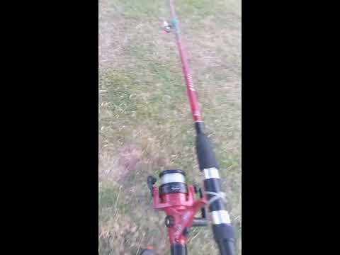 fishing on Morningside park resaca