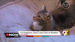 Ohio woman reunited with cat three years after he ran away
