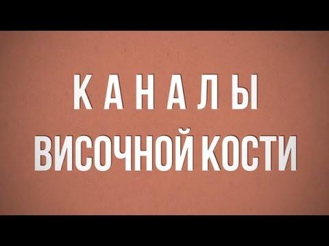 Каналы височной кости - YouTube