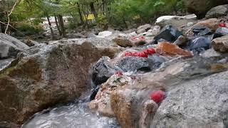 [3분] 휴식을 위한 물소리: 계곡 소리, 공부, 집중, 수면, 힐링, 자연의 소리.