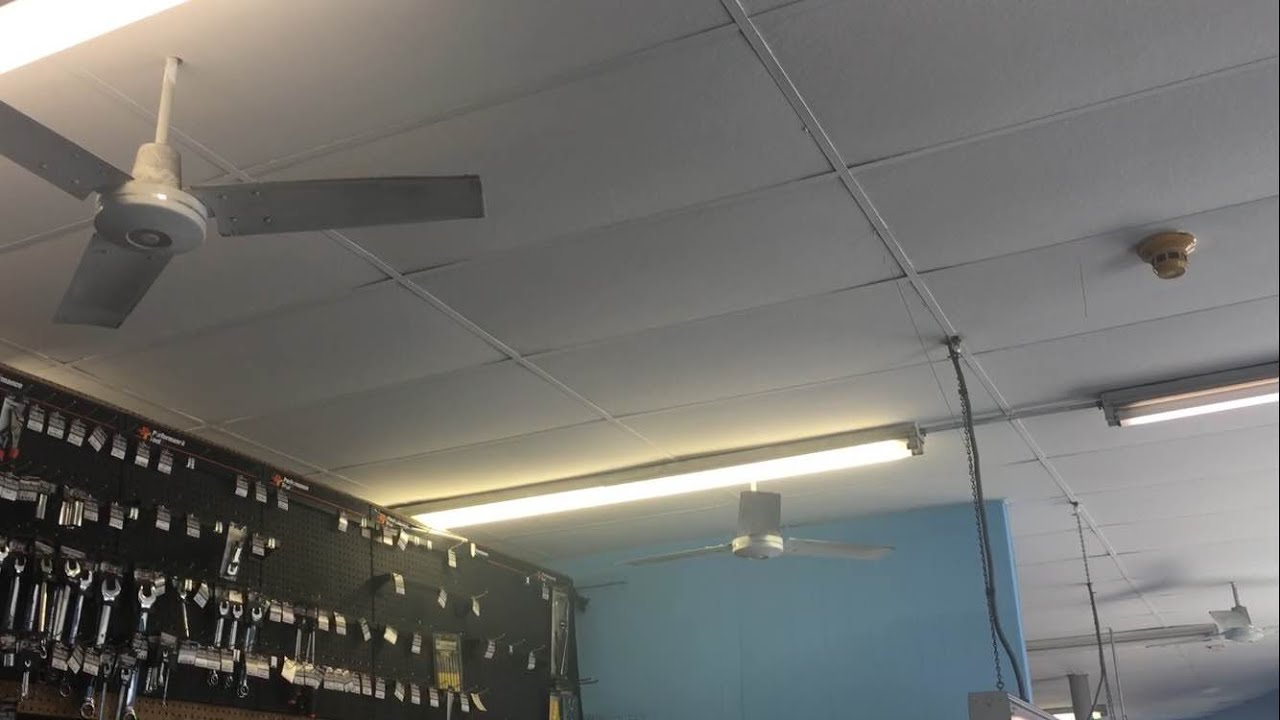 3 Dayton Quot Ring Quot Industrial Ceiling Fans 48 Quot At A Auto Part