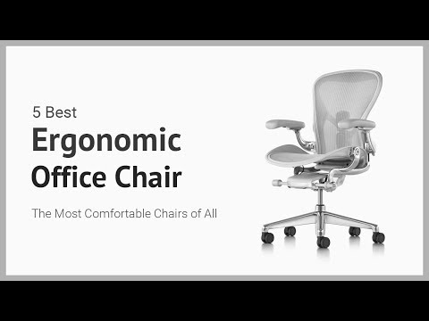 5 Best Ergonomic Office Chair - Best Executive Office Chairs Reviews
