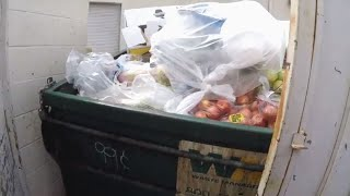 DOES THIS MAKE YOU MAD? LOOK WHAT'S IN THIS DUMPSTER
