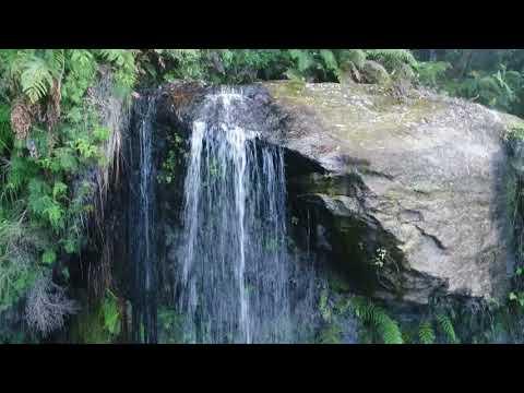 Fairy Bower Falls   Morton National Park 2 10 2017
