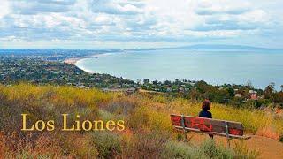 Hiking Los Liones Canyon, Malibu