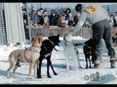 1959 North American Championship Sled Dog Races - Fairbanks, Alaska