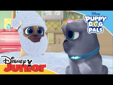 Puppy Dog Pals 🐶 | Magical Moment: Clean Up Time | Official Disney Channel Africa