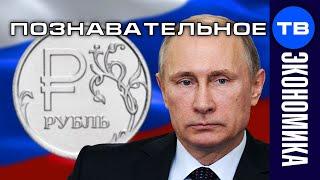 Откуда Путин берёт деньги на коронакризис? (Познавательное ТВ, Артём Войтенков)