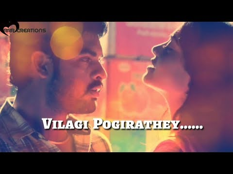Ammadi ammadi Song/Anintha Udaigalum nyc cutted lines/Tamil whatsapp status