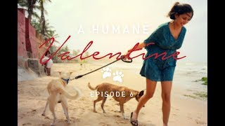 A Humane Valentine- Episode 06, With Divya Dugar