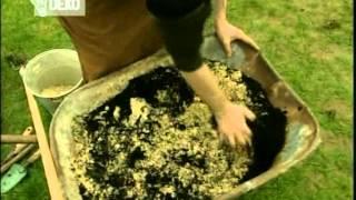 Ticho,už to roste   27 Koňské boby, rozchodník, trávník, gloxínie