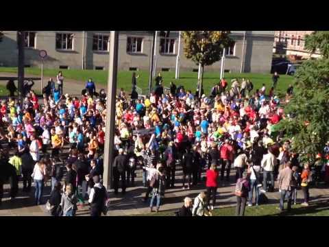 Morgenpost - Dresden Marathon 2014: START