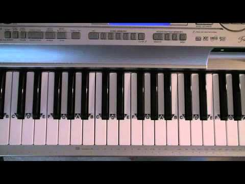 Piano Lessons Tampa