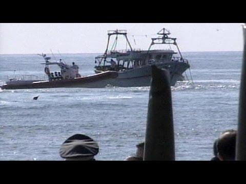 Migrants killed in Italian shipwreck