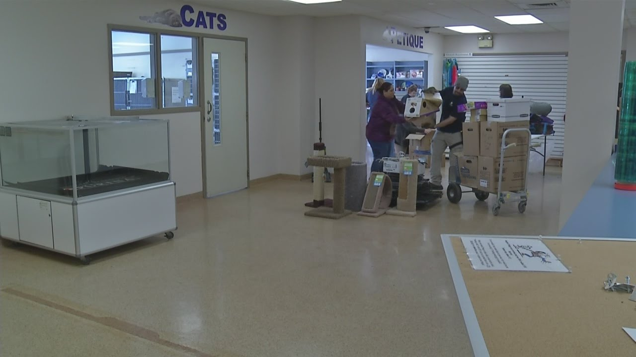 Erie County SPCA moving into new facility