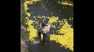 Luxembourg-City Duckrace 2004