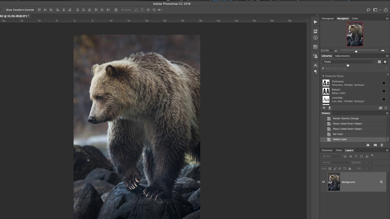 3 Ways to Add a Watermark to Your Photos in Photoshop CC