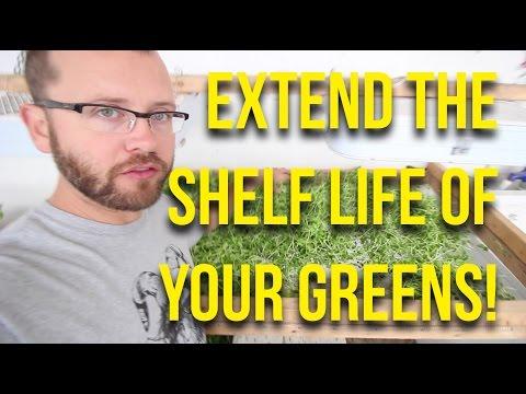 IN FOCUS: Greens Drying Screen