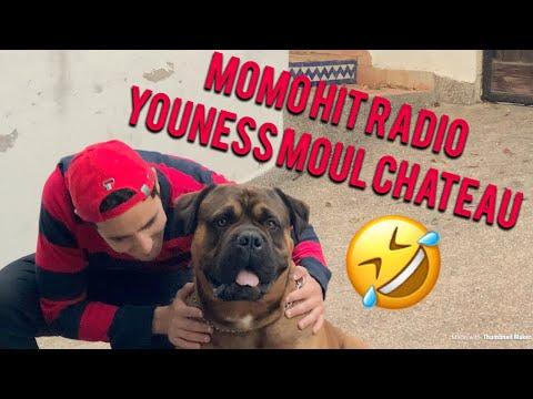 Momo Hit Radio ...Tayson : le chien préféré de Youness Moul château