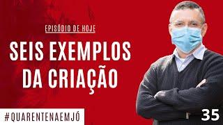 10/06 - #35 Seis Exemplos da Criação (Jó 39.1-30) - Daniel Santos