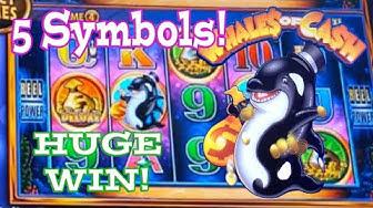 WHALES OF CASH LAS VEGAS 🐳5 SYMBOL DELUXE SUPER FREE GAMES MAX BET!