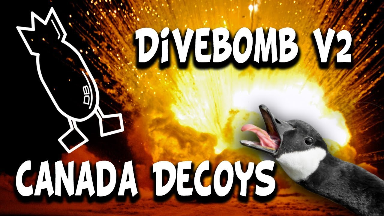 DIVEBOMB V2 AND BAG REVIEW