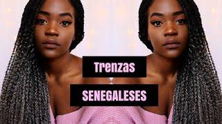 COMO HACER  TRENZAS SENEGALESES (trenzas en dos)