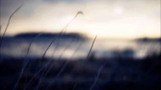 Rob Dougan- Nothing at all