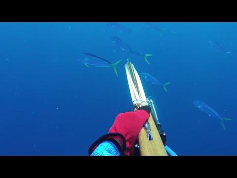 Underwater Archers 2016