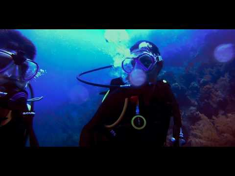The Grand Turk Island Diving 16/08/2017
